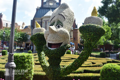 Lumiére Topiary at Epcot (rook.behr) Tags: flower lumiere outdoors disneyworld day topiary epcot flowers outside plants