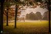 PARC DE LA TÊTE D'OR Foggy morning in the park. #parcdelatetedor  #tetedor #lyoncity #lyon #grandLyon #grandlyonmetropole #france #lasoane #Kingston #Nikon #nikon2470mm #nikonfullframe #travelphotography #travel #rokmeul  #rokmeulphotography #ilovelyon #l (rokmeul) Tags: grandlyonmetropole nikonfullframe rokmeul kingston lyon rokmeulphotography travelphotography lasoane nikon2470mm parcdelatetedor nikon france grandlyon lyoncity lafranceestbelle tetedor ilovelyon travel
