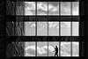 Housekeeping (laga2001) Tags: housekeeper cleaner cleaning broom glass windows sky black white bw monochrome contrast silhouette shadow work lines geometry clouds person worker urban street canon