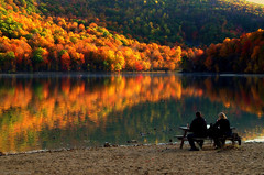 """The best seat in the """"house"""" to watch the show.. (Captions by Nica... (Fieger Photography)) Tags: people picnic picnictable reflections reflection trees tree autumn forest fall colorful colors nature landscape lake outdoor serene quebec canada"""