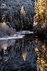 Valley Light (Maddog Murph) Tags: yosemite valley merced river reflections first light fresh snow dawn trees water flow