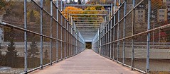 To the Hills (TwinCitiesSeen) Tags: duluth minnesota bridge fence canon6d tamron2875mm