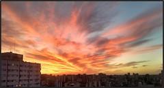 Otra puesta de sol gloriosa (marialuz_fernandez) Tags: cloudsstormssunsetssunrises clouds sky sunset dusk atardecer cielo nubes cityscape city urbano paisajeurbano urbanlandscape skyscape gv buenosaires argentina