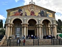 2 - Nemzetek temploma / Bazilika Agónie