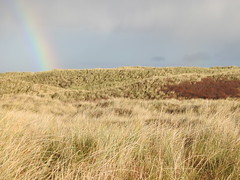 Dunes with rainbow (BSCG (Badenoch and Strathspey Conservation Group)) Tags: coul dunes rainbow winter landscape view coast