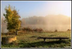Brume sur le lac. (Les photos de LN) Tags: banc lac paysage nature automne couleurs lumière teintes végétation verdure berges rives