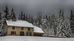 Etoilée... (Fred&rique) Tags: lumixfz1000 photoshop raw hdr paysage nature maison architecture neige sapin froid doubs france