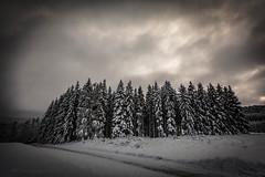 20171129001185 (koppomcolors) Tags: koppomcolors winter vinter snö snow värmland varmland sweden sverige scandinavia