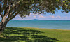Rangitoto Volcano Landscape (Andy.Gocher) Tags: andygocher canon100d rangitoto volcano newzealand beachlands tree water landscape clouds