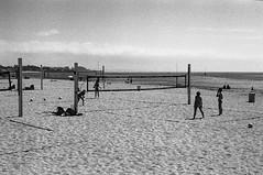 Cowell Beach, Santa Cruz, CA (Postcards from San Francisco) Tags: m6 santacruz 90mmmacroelmar berggerpancro400 ber49
