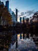 New York City (ScenEssence) Tags: centralpark park nature landspace natrualenvirnoment newyork newyorkcity city fall winter lake leaves boats skyscrappers skyscrapper architecture downtown cityscape landmark panoramic street hudson nyc liberty manhattan american center