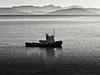 Travesía (Bonsailara1) Tags: bonsailara1 adriático mar adriatic sea boat sail