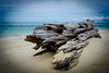 Drifted Away (M.Camplejohn) Tags: borneo honeymoon landscape pulauselingaan sky turtleisland sonya6000