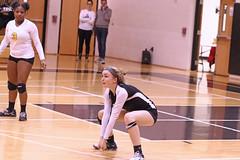 IMG_1072 (SJH Foto) Tags: girls volleyball high school lancaster mennonite littlestown hs team