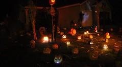Halloween 2017_57 (Clown Guy) Tags: pumpkins pumpkinpatch jackolanterns halloween halloween2017 halloweenhouse halloweenyard halloweenyarddecor halloweenyardhaunt clowncourt homehaunt homehaunter haunter