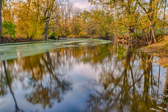Fall In the River (tquist24) Tags: elkhartriver goshen hdr indiana nikon nikond5300 outdoor shanklinpark autumn fall geotagged longexposure nature park reflection reflections river tree trees water unitedstates