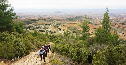 Senderismo por Monte Toloño Logroño Fotografia Tomas Sanz (124)