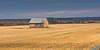 Golden field (guytarebergeron) Tags: barn rural country landscape