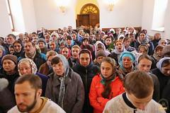 59. Собор Архистратига Михаила в Адамовке 21.11.2017