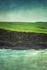 Across the bay (borealnz) Tags: curiobay catlins otago newzealand sea ocean bay sheep green rocks rugged