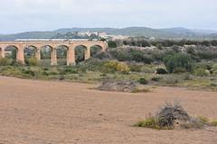 Els Deu Ponts, La Riera de Gaià (esta_ahi) Tags: tarragona larieradegaià tarragonès spain españa испания conillera conejeras puente train tren ave pont