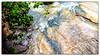 Ρέμα Πικροδάφνης (Έδεμ) Μετά από δυνατή βροχή, 21 Νοεμβρίου 2013 (do_kimi) Tags: ρέμαπικροδάφνησ άλιμοσ γεφύρι καλαμάκι παλαιόφάληρο γούσιασ httpgousiasgr