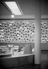 Musée d'Arts de Nantes (samuelparois) Tags: olympus pen ft f 40mm fomapan 400 iso800 pushed film analog argentique pellicule black white noir blanc halfframe half musée arts nantes museum art