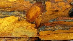 Costa Vicentina   Na falésia (antoninodias13) Tags: cores pedras xisto amarelo texturas isolamento selvagem arribas falésias baíadostiros rumor aljezur faro algarve portugal