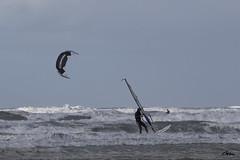 Mer du Nord (giloudim) Tags: merdunord eau windsurf kitesurf ciél belgique canon7dmarkii tamrom bleu vague exterieur voile koksijde