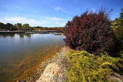 Cranbourne RBG Nov 2017 030 (Graeme Butler) Tags: water landscape history gardens australianplants architecture victoria australia