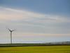 Wind Farm (Nigel Wallace1) Tags: windfarm windmill tintagel delebole cornwall energy eco windpower landscape nature construction tall power early morning sunrise towering village wideangle olympus omdem1mk11 1240mm leefilters