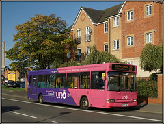 UNO 115 St.James Road (Jason 87030) Tags: slf pointer dart dennis uno uni uon universityofnorthampton sunny pink purple withdrawn october 2017 ilce sony alpha a600 lens tag nice a6000 ke53lmy 115 19 pussy rare pretty exclusive capture explore exist amazing pro amateur super great fantastic world bright light photograph new trip uk travel sweet bestoftheday smile picoftheday life look likes flickr photostream fanny adams nothing nought flats wall brick views whatever anything random