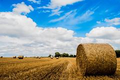 Bales, again! (bharathputtur122) Tags: hay bales sunny clouds bright blue yellow scenery uk buckinghamshire dinton nikon d750 2470 nikkor circles crops
