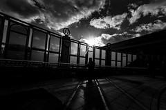 20171119 Afternoon sunlight (soyokazeojisan) Tags: japan osaka bw light park city street people shadow glass sunlight olympus em1markⅱ 714mmf28pro cloud sun bridge