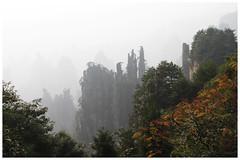 御筆峰 Imperial Brush Peak (Alice 2018) Tags: mountain 2010 china 湖南 hunan autumn misty travel asia canoneos7d eos7d 24105mm autofocus saariysqualitypictures canonef24105mmf4lisusm aatvl01 aatvl02