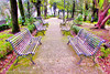 Benches (Francesco Impellizzeri) Tags: erice sicilia italy canon benches trees