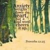 Anxiety and the Heart (Create In Media) Tags: anxiety depression encouragement lifts