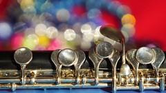 Member's Choice - Musical Instruments (YᗩSᗰIᘉᗴ HᗴᘉS +9 500 000 thx❀) Tags: memberschoicemusicalinstruments musicalinstrument instrument music macro macromondays flûte piccolo hensyasmine yasminehens mm hmm crazytuesday round 7dwf