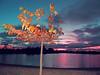 crépuscule au lac (danie _m_) Tags: naturepic lake twilight sky water earth tree autumn trees clouds colorful landscape evening lovenature beautiful leaves nature lac ciel terre nuages eau couleurs paysage arbre feuilles arbres soir crépusculaire coucherdesoleil automne sunset