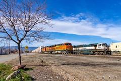 Hot Q-Train and Local Power (Colorado & Southern) Tags: bnsfrailway burlingtonnorthern gees44dc gec449w emdsd70mac intermodal intermodaltrain trains train railfanning railroad railfan railway railroads railroading rail rr railroadtrack colorado coloradorailroads coloradotrains