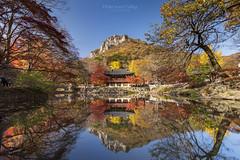 白羊寺,Baegyangsa,South Korea (TaiNg0415) Tags: 白羊寺 nikon d810 倒影 紅葉 山 韓國 korea