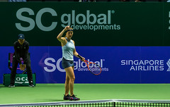 20171025-0I7A1970 (siddharthx) Tags: singapore sg simonahalep carolinegarcia elinasvitolina wtasingapore tennis womenstennis singaporeindoorstadium power grace elegance contest competition 1seed 4seed 6seed 8seed champions rally volley serve powerfulserves focus emotions sports wtatour porscheservesspeed bnpparibas stadium sport people wta winner sign crowd carolinewozniacki portrait actionshots frozenintime