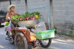 mobile flower vendor (the foreign photographer - ฝรั่งถ่) Tags: man mobile flower vendor cart orchids sprigs home shrine decoration bangkhen bangkok thailand nikon
