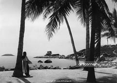 Hòn Chồng (A natural stone setting) - Nha Trang - 1969 (Nguyen Ba Khiem) Tags: 1960s 1969 hìnhảnhxưa việtnam việtnamxưa nhatrang nhatrangxưa nguyễnbámậu phongcảnh biển nước dừa bãidương hònchồng áodài nónlá
