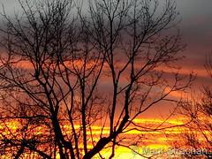 November 22, 2017 - A fiery sunset in Thornton. (Mark Strachan)