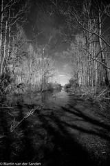 M2460212.jpg (Martin van der sanden) Tags: paynesprairie florida gainesville leicamonochrom blackandwhite leica super elmar m 18mm f38 asph