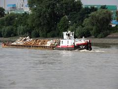2415 (ENI 05603810) (Parchimer) Tags: schubboot pushboat towboat pousseur pchacz duwboot spintore empurradorfluvial binnenschiff tolómotorhajó pushertug hamburg köhlbrand hafen elbe