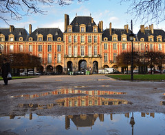Paris - Place des Vosges / After the rain (Pantchoa) Tags: paris france placedesvosges façades architecture flaque eau reflets arbres pluie nikon sigma 1750mmf28