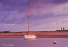 Sunset voyage (Leo Bissett) Tags: yacht sailing boat mast river water sea estuary rush rogerstown sunset dusk