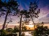 Plage Suzette (Fred LP) Tags: suzettelanton sun sunset sundown sunrise lake france gironde lanton sky tree trees lac colors colored landscape landscapes sea seascape seascapes ocean oceanscape oceanscapes